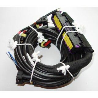 Drive LPG Autogas BRC Kabelbaum 4-Zylinder Plug